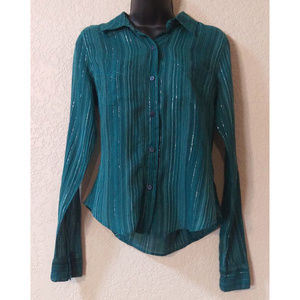 LIKE NEW Sheer teal blouse with metallic silver